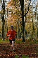 running-sous-bois