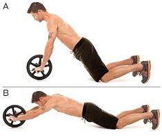 roue-abdominale-exercice