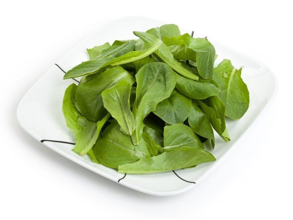Protéines Végétales dans les Epinards