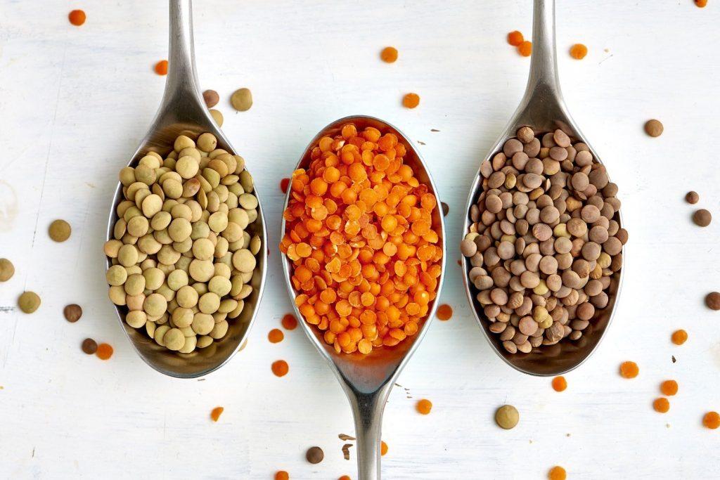 Protéines Végétales dans les Lentilles