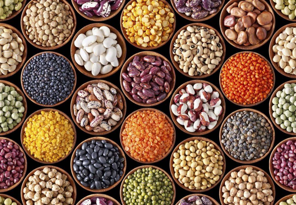 Protéines Végétales dans Les Amandes et autres Oléagineux