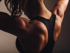 Quelle est la Meilleure Protéine pour Sécher ?