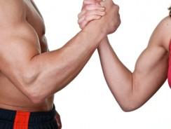 Guide pour se muscler les bras